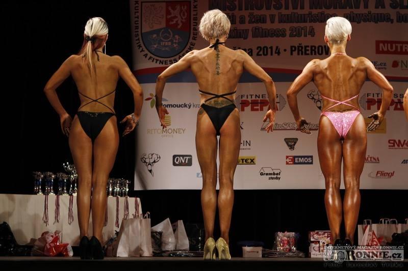 Mistrovství Moravy a Slezska 2014