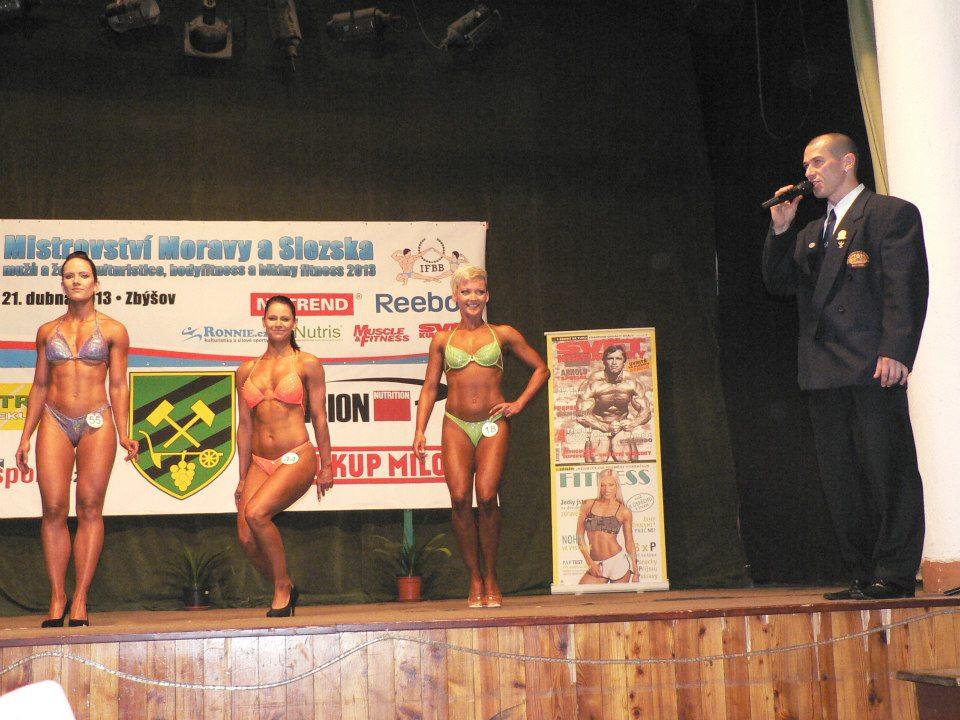 Mistrovství Moravy a Slezska 2013
